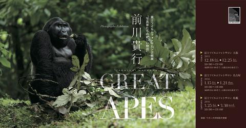 GREAT-APES-展.jpg