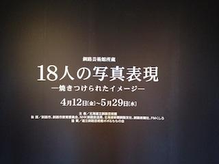 IMG_1331s.jpg